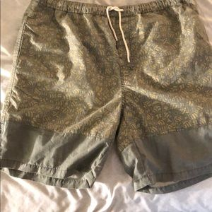 Iron and Resin shorts